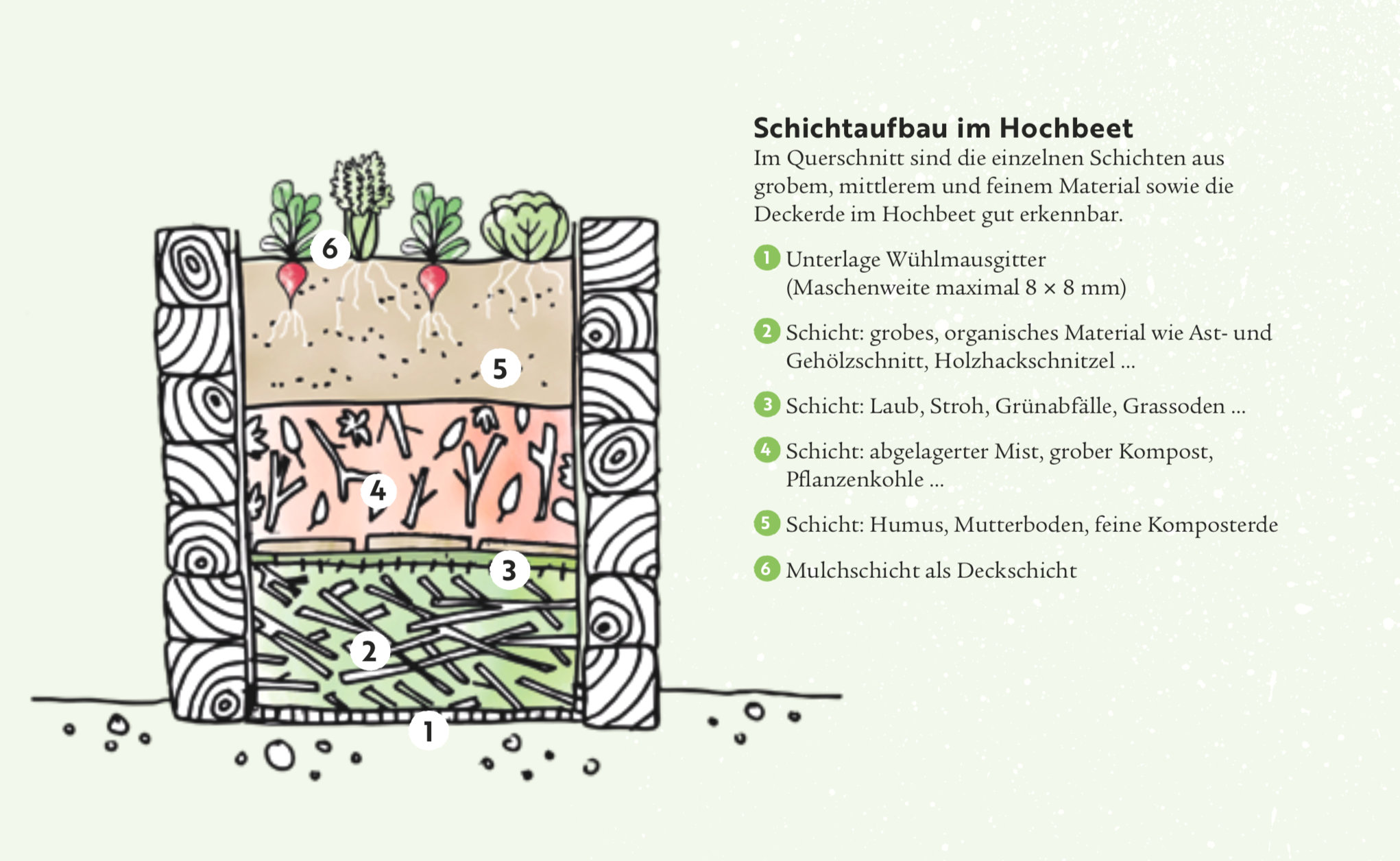 Planung eines bunten Gemüsegartens
